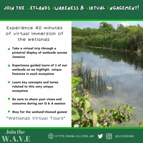 The Natural History Museum of Jamaica: Join the W.A.V.E